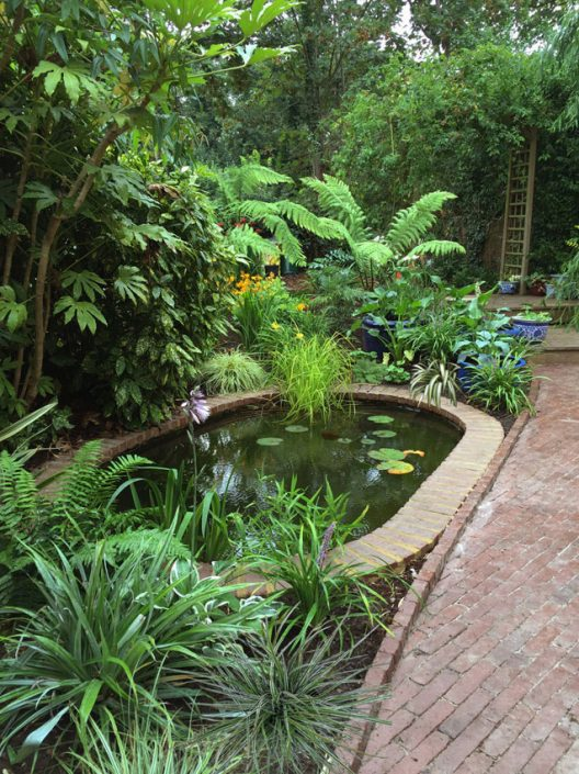 Garden pool and lush planting