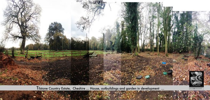 Grounds to be turned into a woodland garden
