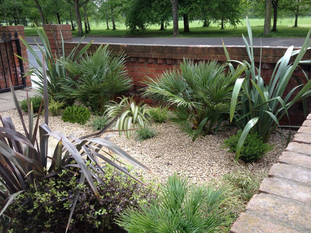 Architectural planting garden design by antonia schofield for Low maintenance planting schemes