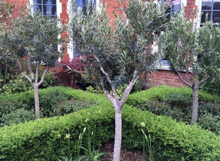 Restored parterre garden