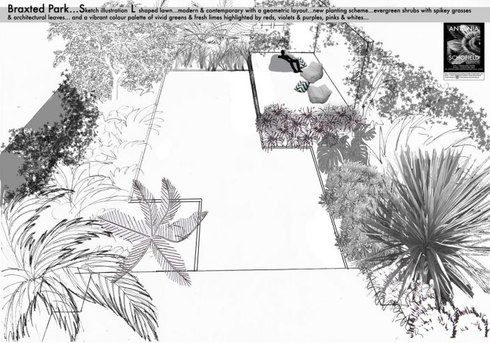 Geometric layout for tropical garden