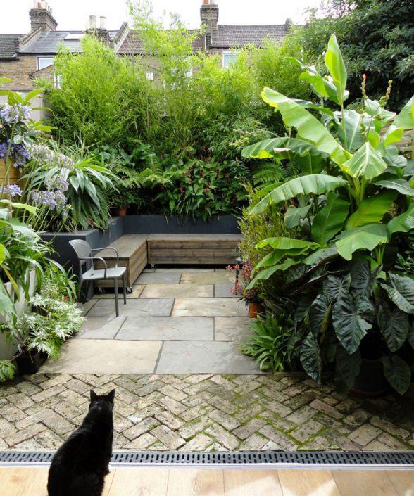 'Exotic' planting by Antonia Schofield, Garden designer