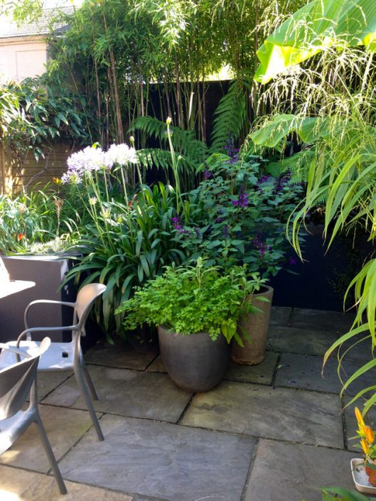 Pots with planting