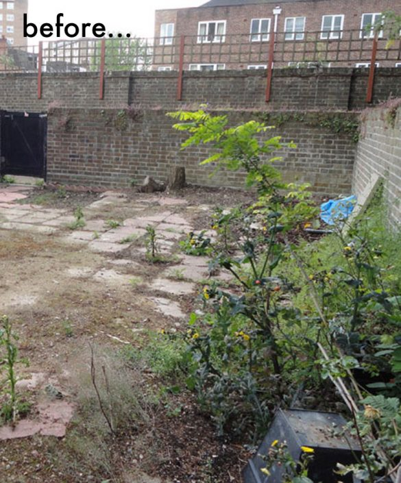 Garden before - far end