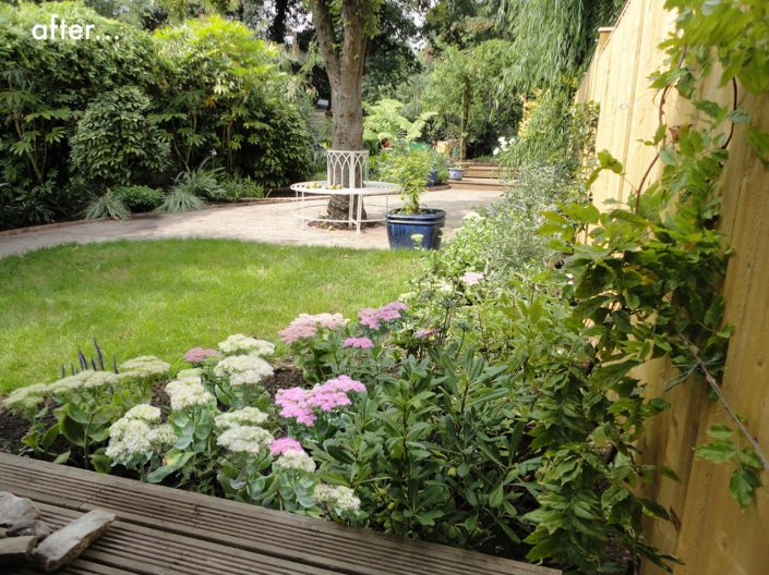 Garden after planting