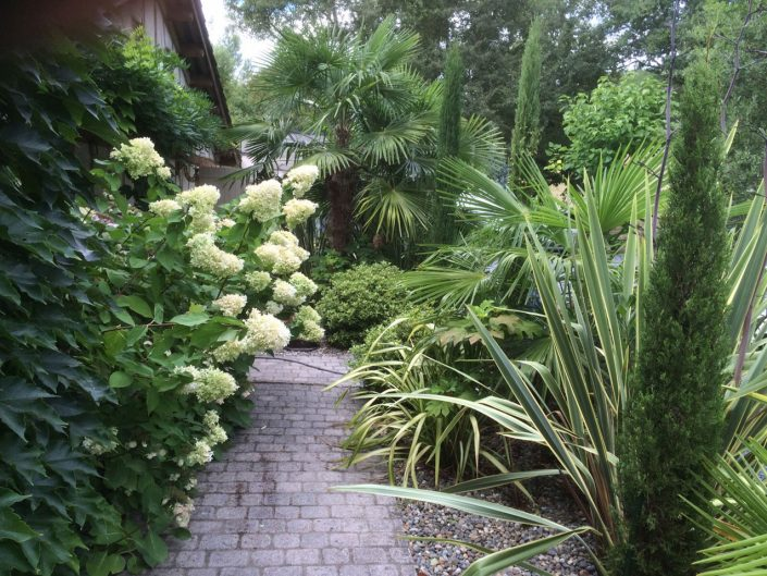 Fresh greens and cream in harmony - Antonia Schofield Garden Design