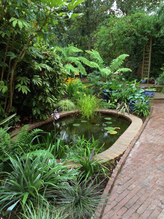 Lush poolside planting