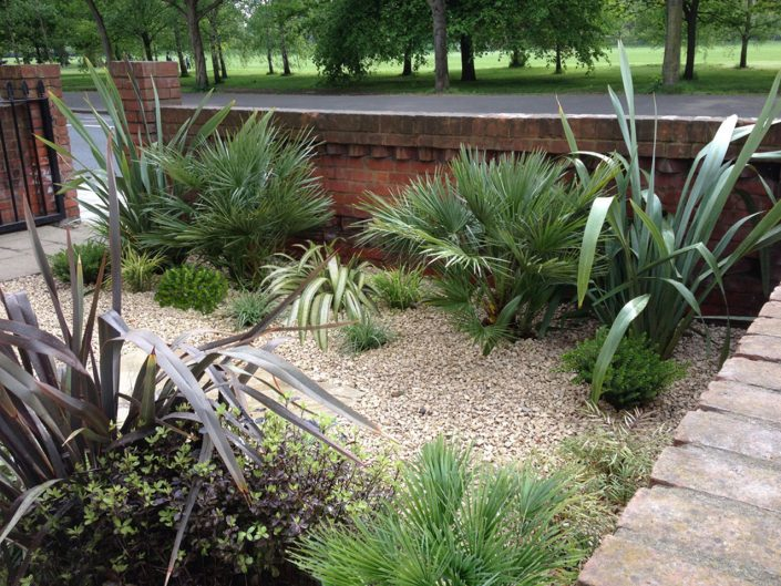Spikey and architectural – Garden Design by Antonia Schofield