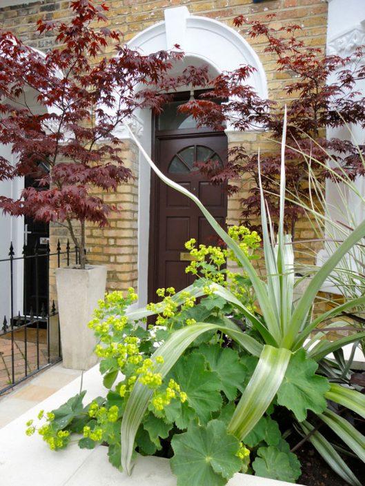 Contrasting hues – Garden Design by Antonia Schofield