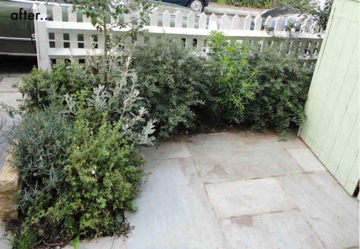 Fresh new garden