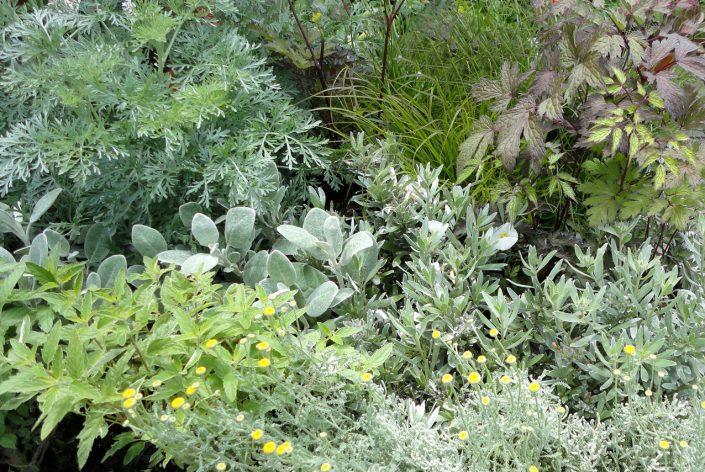 Soft planting scheme